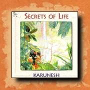 Karunesh - Secrets of Life, new age relaxation music
